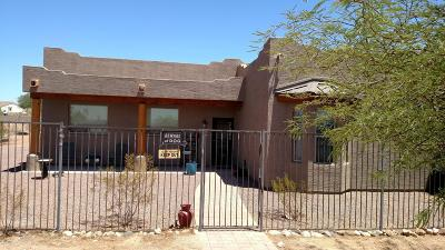Peoria Single Family Home For Sale: 11420 W Prickly Pear Trail