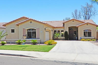 Queen Creek Single Family Home UCB (Under Contract-Backups): 21151 E Stirrup Street