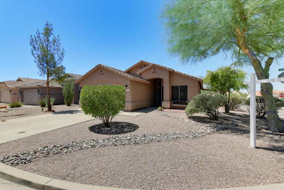 Gold Canyon Single Family Home For Sale: 6456 S Foothills Drive
