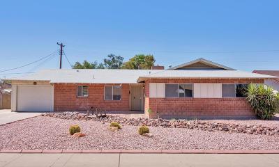 Phoenix Single Family Home For Sale: 3519 W Belmont Avenue