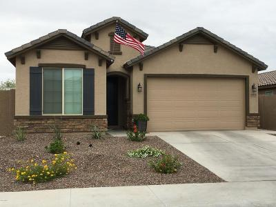 Goodyear Single Family Home For Sale: 10834 S 175th Drive