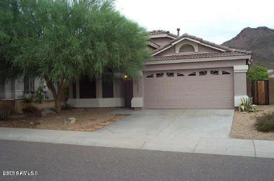 Phoenix Single Family Home For Sale: 25809 N 65th Drive