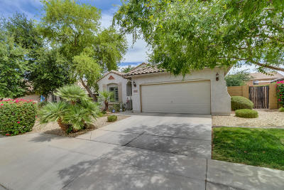 Waddell Single Family Home For Sale: 18257 W Townley Avenue