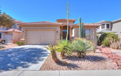 Maricopa Single Family Home For Sale: 43850 W Snow Drive