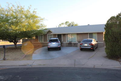 Mesa Single Family Home For Sale: 718 E Holmes Avenue