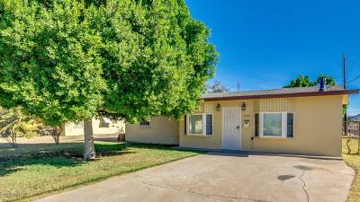 Phoenix Single Family Home For Sale: 9005 N 3rd Drive