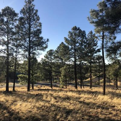 Overgaard AZ Residential Lots & Land For Sale: $24,500
