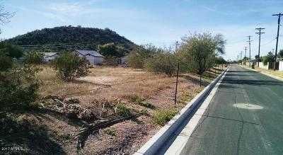 Mesa Residential Lots & Land For Sale: S 86th Street