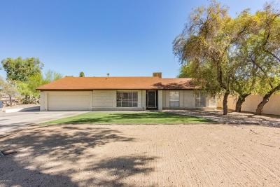 Phoenix Single Family Home For Sale: 838 E Village Circle Drive S