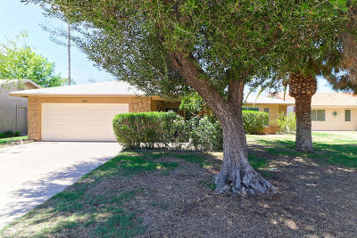 Mesa Single Family Home For Sale: 534 Leisure World