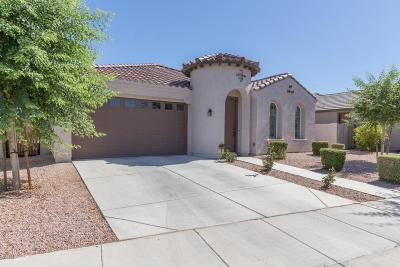 Queen Creek Single Family Home For Sale: 22220 E Creekside Drive