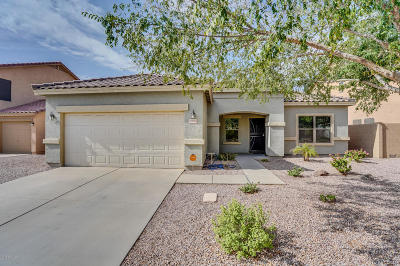San Tan Valley Single Family Home For Sale: 2903 W Sunshine Butte Drive