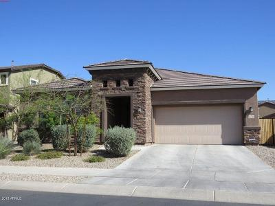 Goodyear Single Family Home For Sale: 15744 W Pierce Street