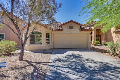 San Tan Valley Single Family Home For Sale: 4081 E Mine Shaft Road