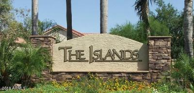Gilbert Single Family Home For Sale: 1042 S Surfside Drive