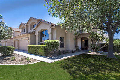 Gilbert Single Family Home For Sale: 845 E Gail Drive