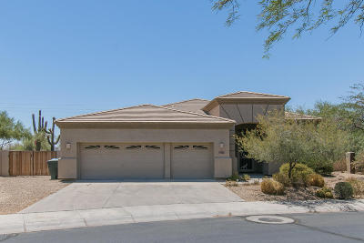 Single Family Home For Sale: 4961 E Desert Vista Trail