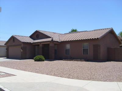 Phoenix AZ Single Family Home For Sale: $315,000