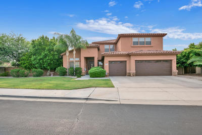 Mesa Single Family Home For Sale: 2241 S Faith