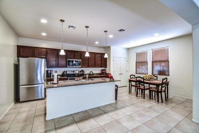 Mesa Single Family Home For Sale: 163 N Sandal