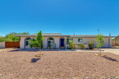 Fountain Hills Single Family Home For Sale: 14819 N Alamosa Circle