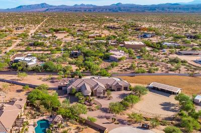 Scottsdale Single Family Home For Sale: 14214 E Lone Mountain Road