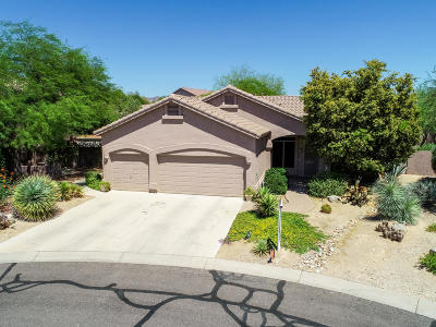 Mesa AZ Single Family Home For Sale: $365,000