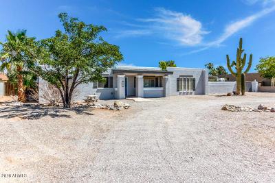Mesa Single Family Home For Sale: 7636 E Emelita Avenue