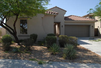 Goodyear Single Family Home For Sale: 17665 W Agave Road