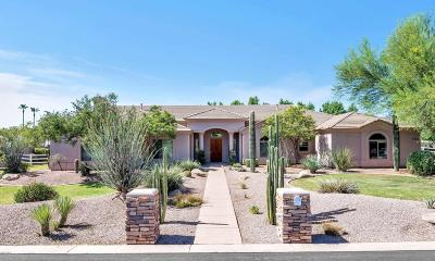 Gilbert Single Family Home For Sale: 2653 E Lines Lane
