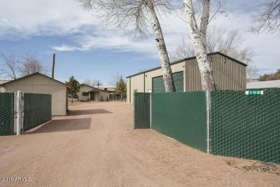 Payson Single Family Home For Sale: 108 E Garrels Drive