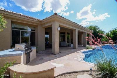 Phoenix Single Family Home For Sale: 3848 E Expedition Way