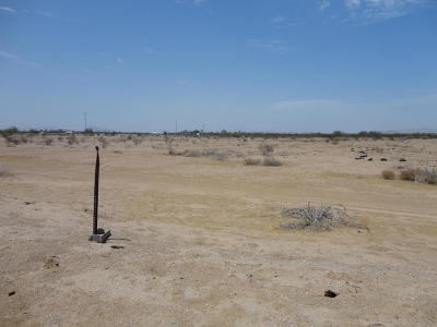 Goodyear Residential Lots & Land For Sale: 17300 W Riggs Road