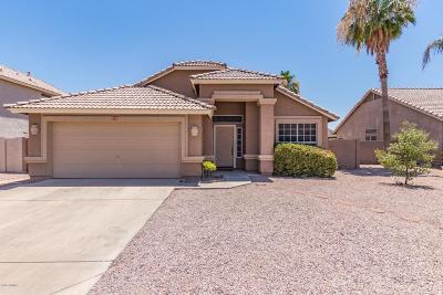 Mesa Single Family Home For Sale: 7153 E Navarro Avenue