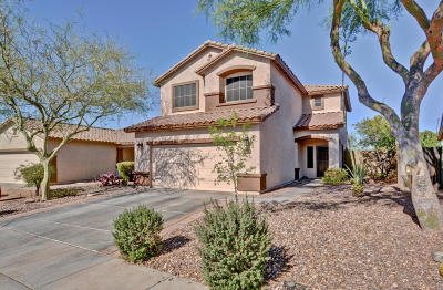 Anthem Single Family Home For Sale: 40226 N Acadia Court