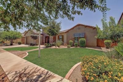 Gilbert Single Family Home For Sale: 3139 E Los Altos Court