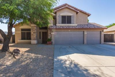 Glendale Single Family Home For Sale: 23211 N 69th Avenue