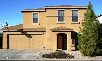 San Tan Valley Single Family Home For Sale: 2512 E Meadow Creek Way