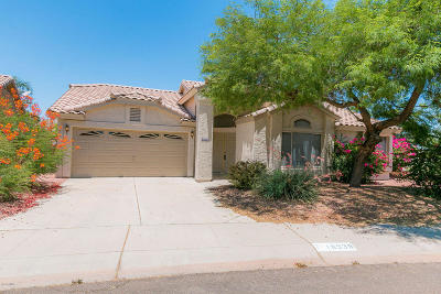 Goodyear Single Family Home For Sale: 10938 Clear Water