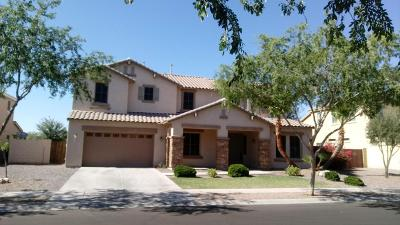 Gilbert Single Family Home For Sale: 2906 E Janelle Way