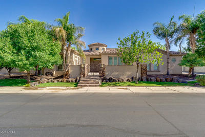 Chandler Single Family Home For Sale: 1875 E Scorpio Place