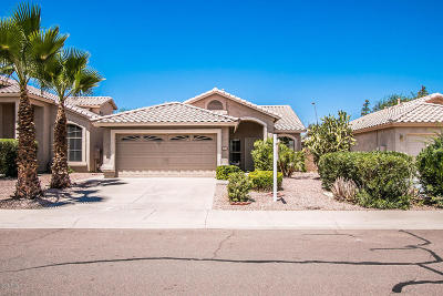 Tempe Single Family Home For Sale: 8510 S Stephanie Lane