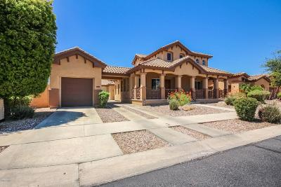 Litchfield Park Single Family Home For Sale: 909 W Sycamore Lane