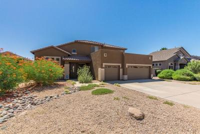 Gilbert Single Family Home For Sale: 95 E Mary Lane
