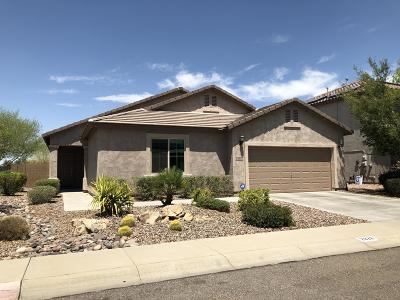Florence Single Family Home For Sale: 2828 N Presidential Drive