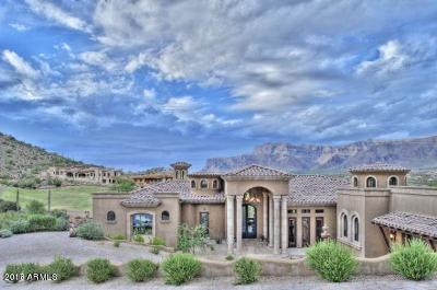 Gold Canyon AZ Single Family Home For Sale: $1,595,000
