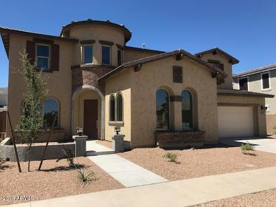 Queen Creek Single Family Home For Sale: 22833 E Desert Hills Drive