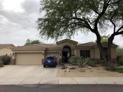 Scottsdale Single Family Home For Sale: 7492 E Buteo Drive