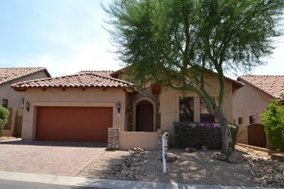 Mesa Single Family Home For Sale: 6907 E Pearl Street