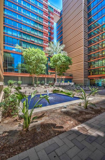 Optima, Optima Biltmore, Optima Biltmore Tower, Optima Biltmore Towers Apartment For Sale: 4808 N 24th Street #703